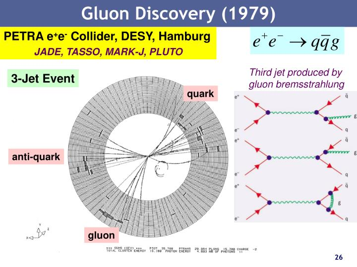 Gluon Discovery (1979)