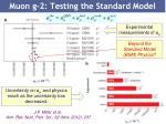 muon g 2 testing the standard model