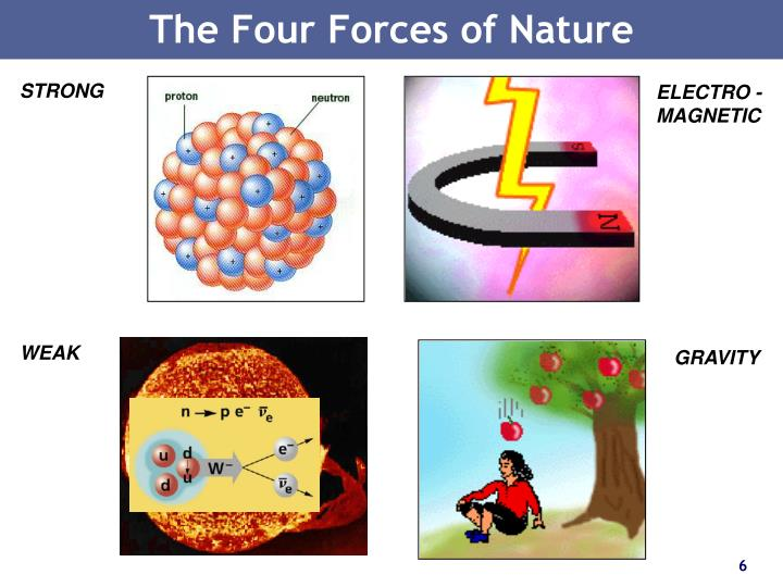 The Four Forces of Nature