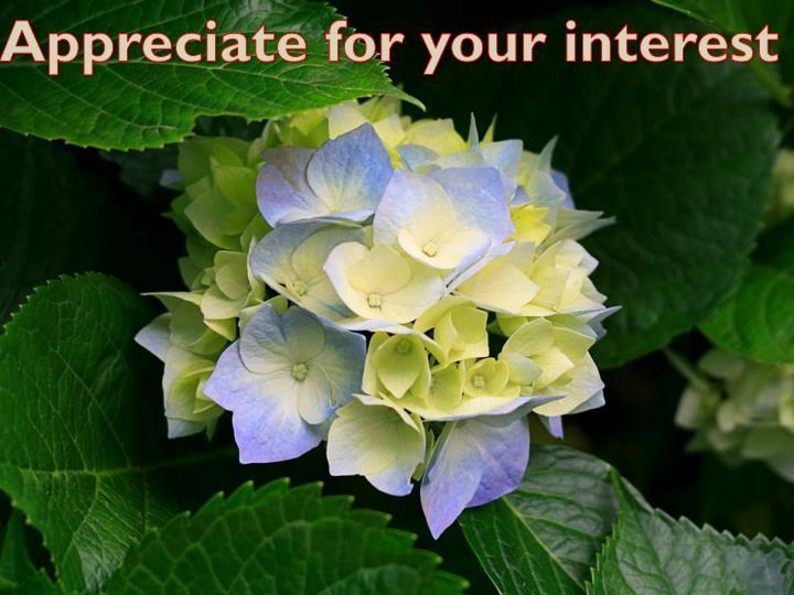 Appreciate for your interest