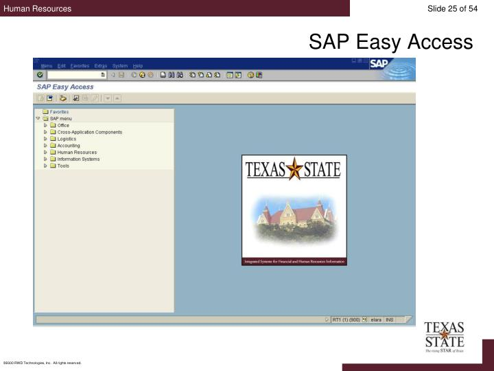 SAP Easy Access