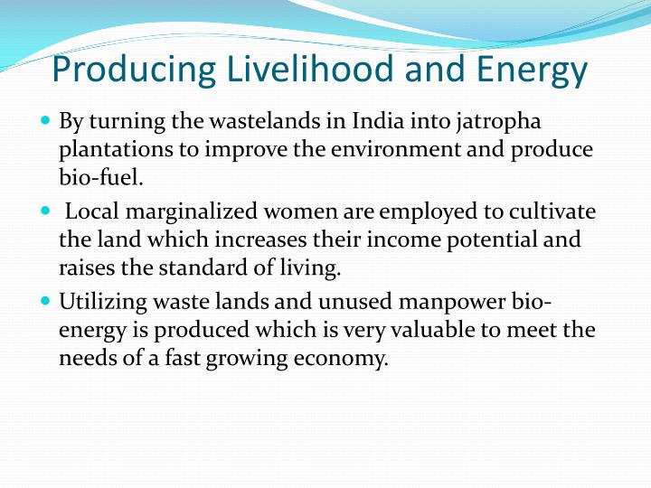 Producing Livelihood and Energy