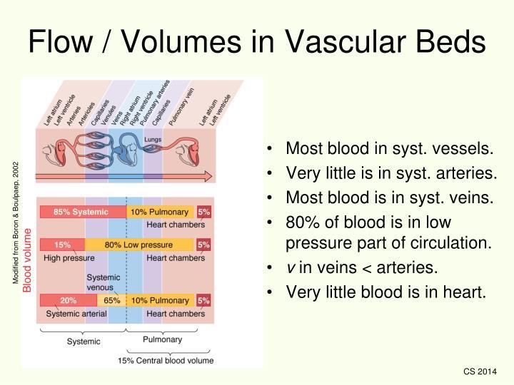 Flow / Volumes in Vascular Beds