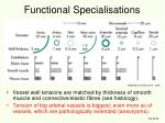 functional specialisations