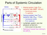 parts of systemic circulation