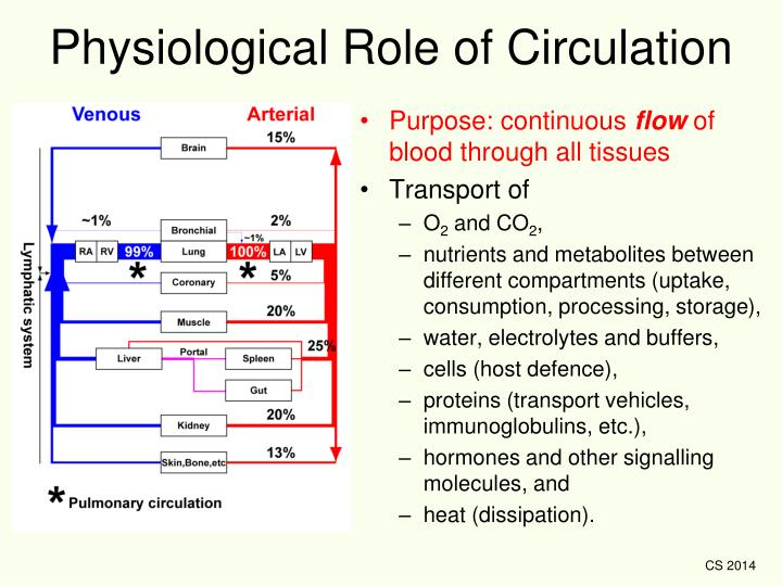 Physiological Role of Circulation