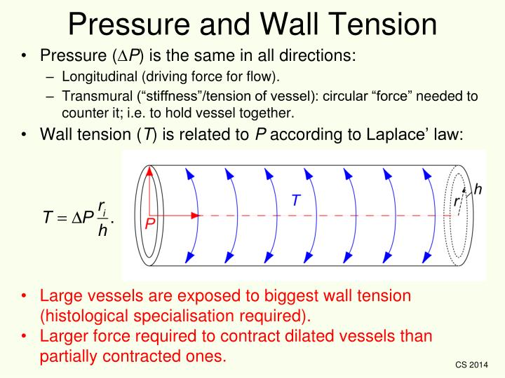 Pressure and Wall Tension