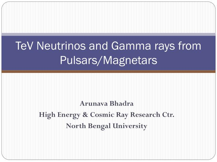 Tev neutrinos and gamma rays from pulsars magnetars