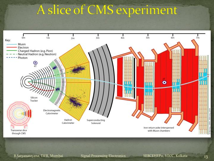 A slice of CMS experiment