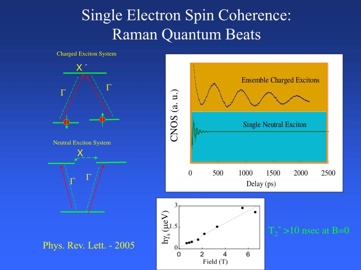 Single Electron Spin Coherence: