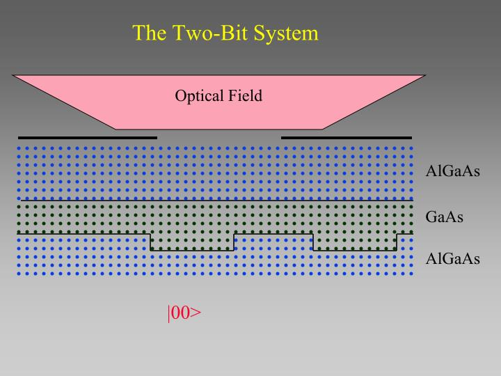 The Two-Bit System