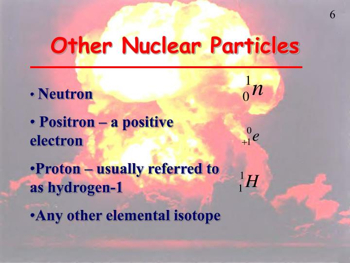 Other Nuclear Particles