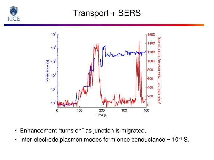Transport + SERS