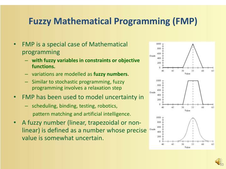 Fuzzy Mathematical Programming (FMP)