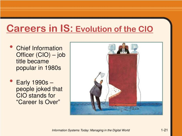Careers in IS: