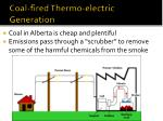 coal fired thermo electric generation
