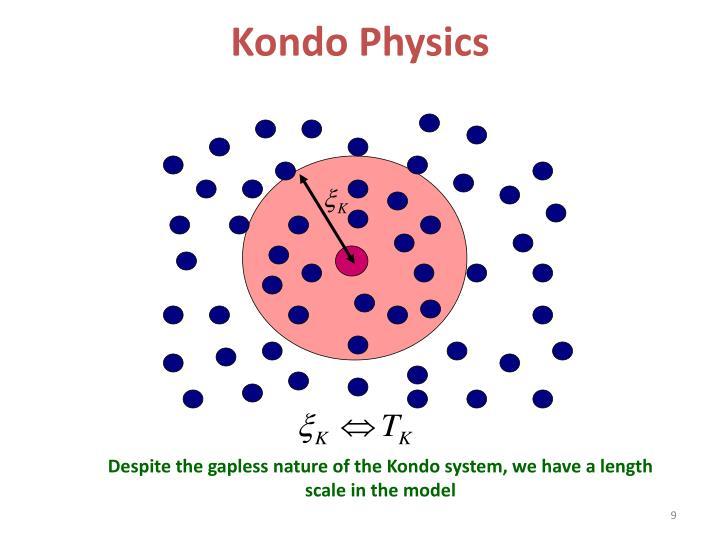 Kondo Physics