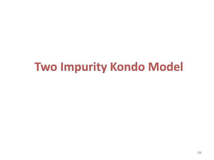 Two Impurity Kondo Model