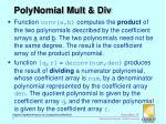 polynomial mult div
