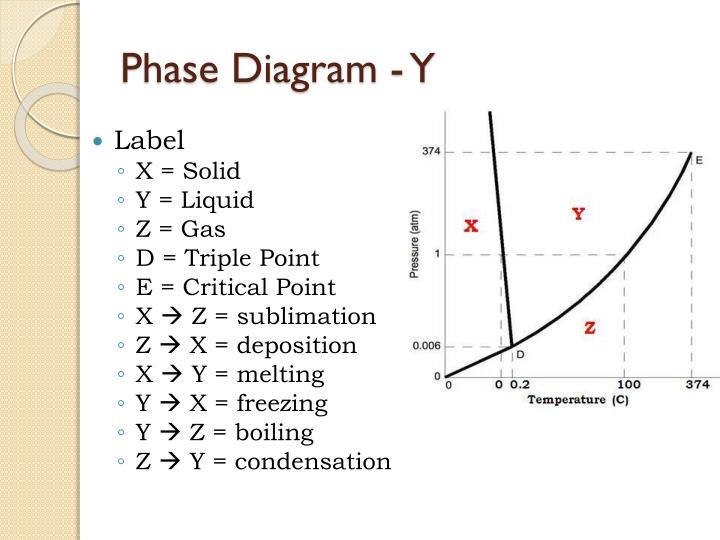 Phase Diagram - Y
