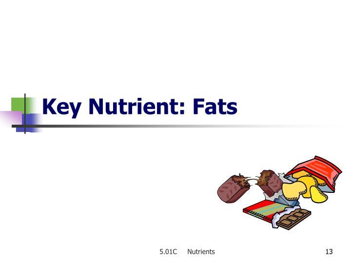Key Nutrient: Fats