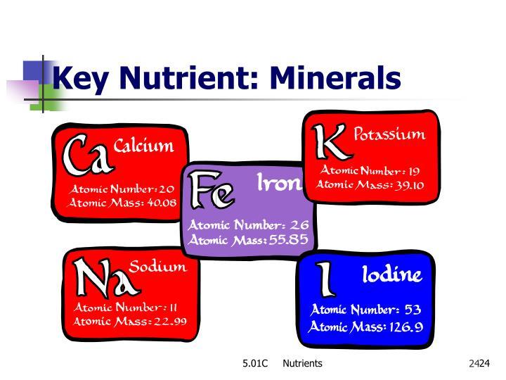Key Nutrient: Minerals
