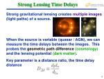 strong lensing time delays