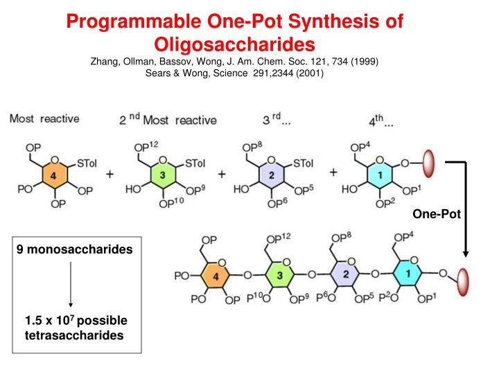 Programmable One-Pot Synthesis of Oligosaccharides