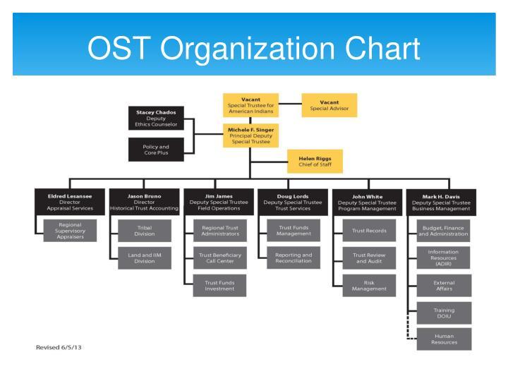 OST Organization