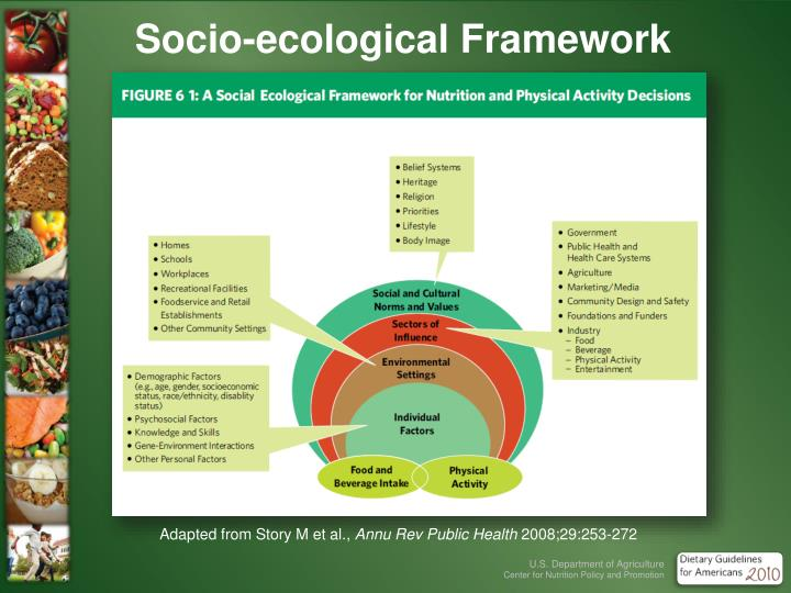 Socio-ecological Framework