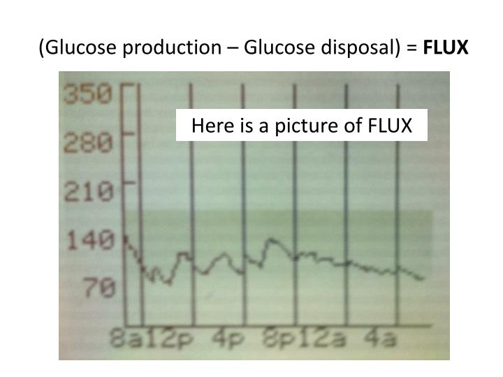 (Glucose production – Glucose disposal) =