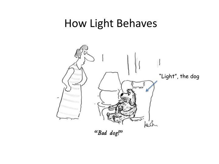 How Light Behaves