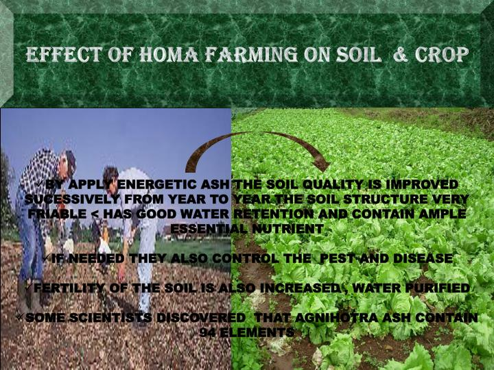 EFFECT OF HOMA FARMING ON SOIL  & CROP