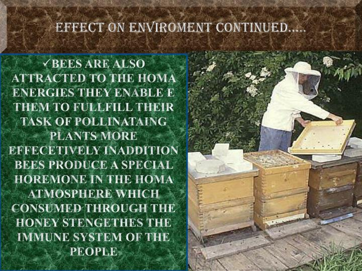EFFECT ON ENVIROMENT CONTINUED…..