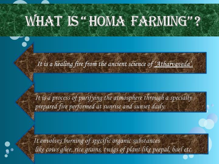 "What  is "" Homa  Farming"" ?"