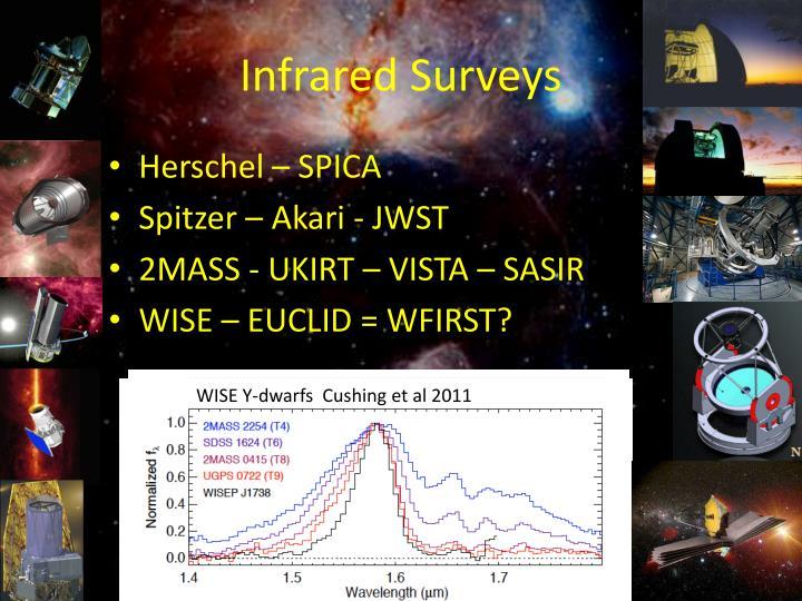 Infrared Surveys