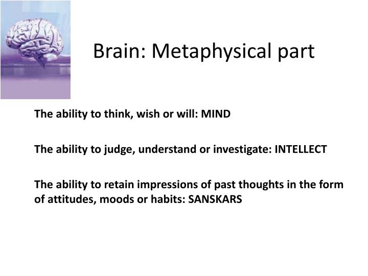 Brain: Metaphysical part
