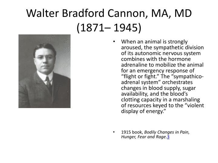 Walter Bradford Cannon, MA, MD (1871– 1945)