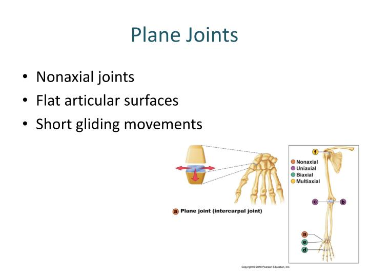 Plane Joints