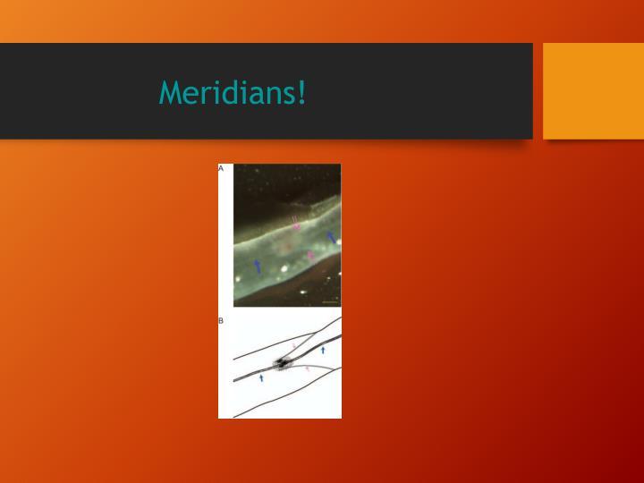 Meridians!