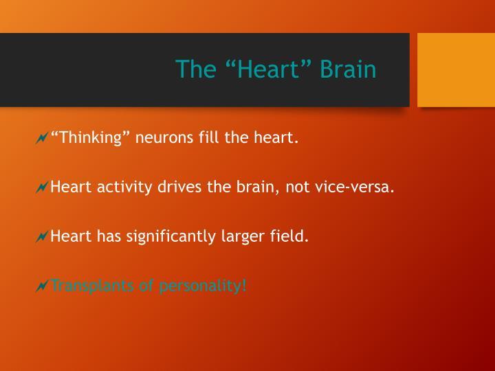"The ""Heart"" Brain"