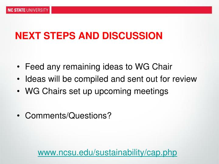NEXT STEPS AND DISCUSSION