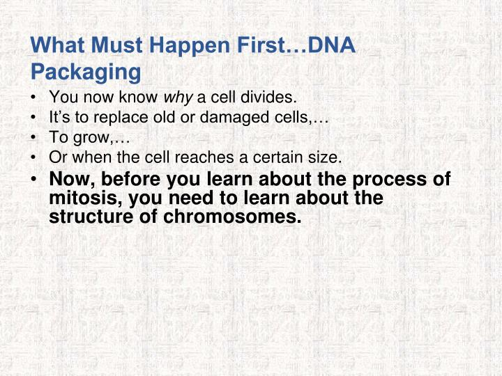 What Must Happen First…DNA Packaging