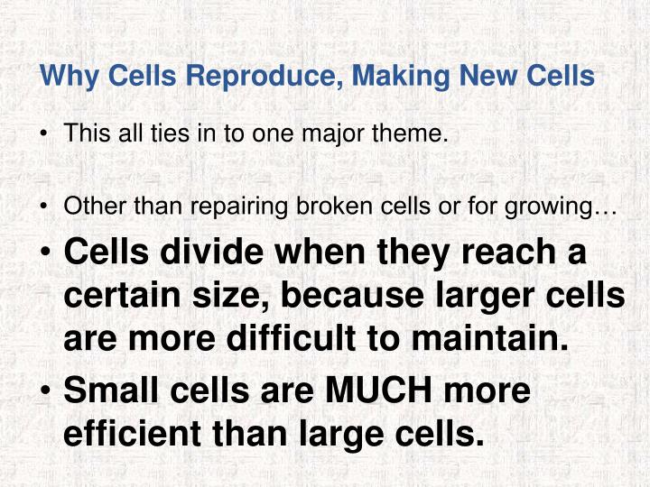 Why Cells Reproduce, Making New Cells