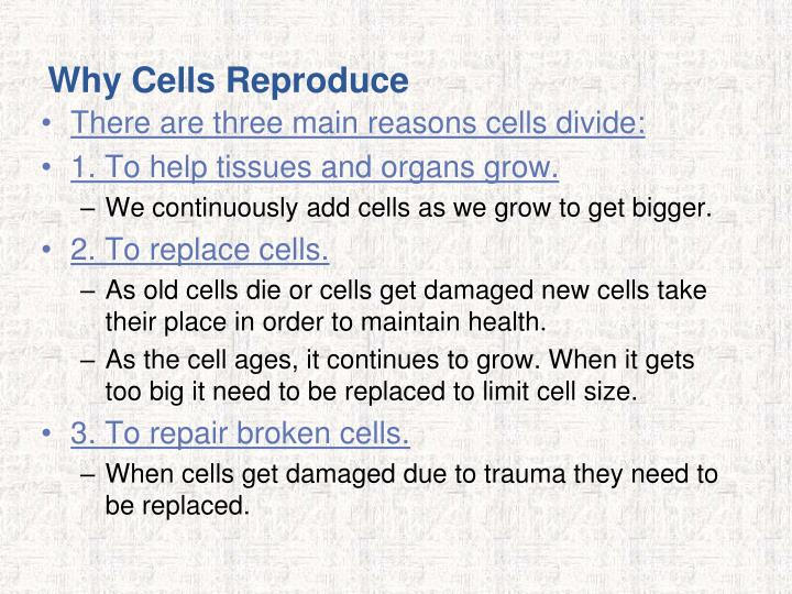 Why Cells Reproduce
