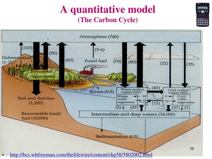 A quantitative model