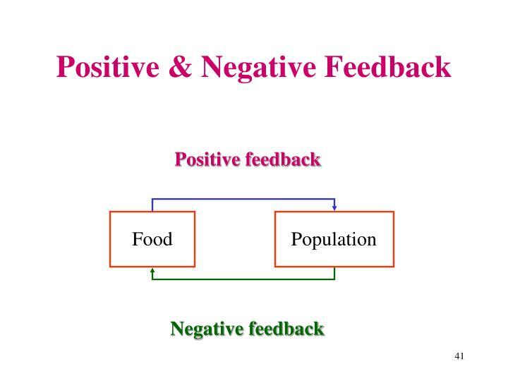 Positive & Negative Feedback