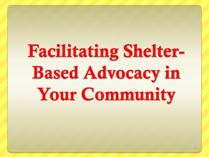 Facilitating Shelter-Based Advocacy in Your Community