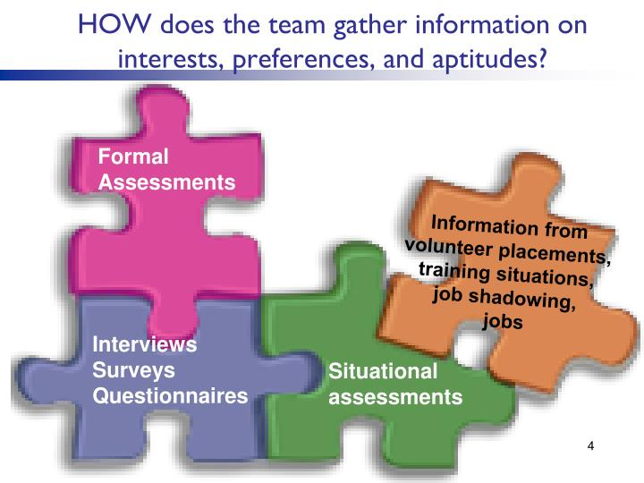 HOW does the team gather information on interests, preferences, and aptitudes?
