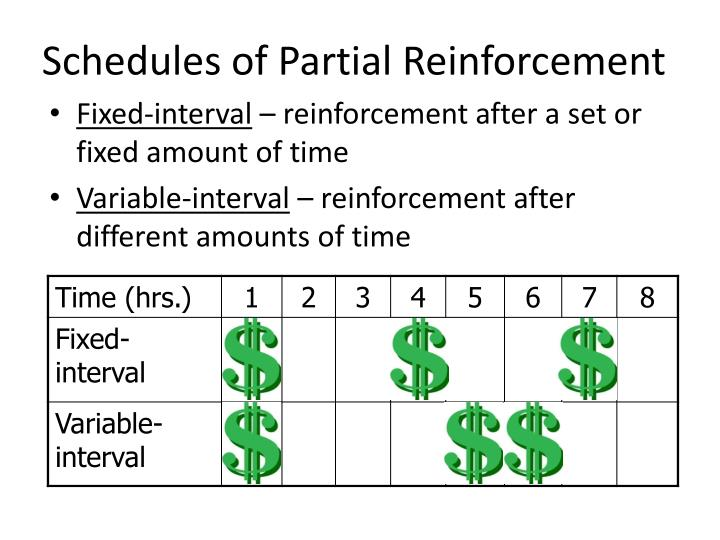 partial reinforcement schedules and exercise essay Positive reinforcement makes people feel appreciated and encouraged, which can be motivating and rewarding advantages & disadvantages of positive reinforcement.